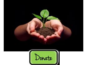 Donation 280